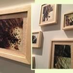 O trabalho superdelicado de Mari Queiroz, que mistura fotografia e bordado, na Galeria Biographica