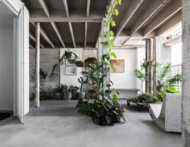 O jardim interno, concebido pelo paisagista André Paoliello, contrapõe a exuberância das plantas à aspereza do concreto aparente, e pode ser desfrutado da cadeira Loop, de Willy Guhl, no Apartamento 61