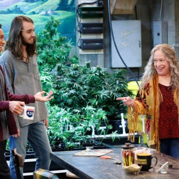 Disjointed O talento da veterana Kathy Bates, interpretando a dona de uma loja de maconha, não conseguiu fazer com que a série passasse da segunda temporada.