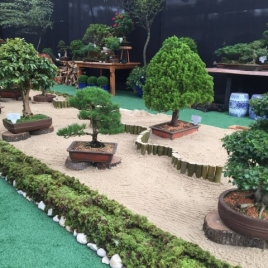 Mostra Bonsai é destaque na zona leste Foto: Shopping Garden