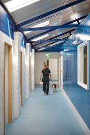 the-london-animal-hospital08