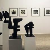 Liuba na Galeria Marcelo Guarnieri