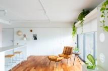 apartamento-estudio-minke_9