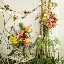Envolver as plantas com um fio de luz é uma dica perfeita para um cantinho verde lindo que segue a moda. É possível, também, colocar pedras e outros adereços para embelezar o jardim como no projeto da foto criado pelo artista plástico Samir Zavitoski, a paisagista Priscilla Bruno e o arquiteto e designer Murilo Weitz Foto: Zeca Wittner